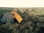 Wild camp at Alkali Creek